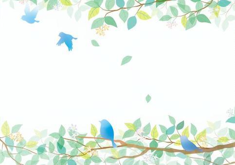藍色鳥和新綠色框架