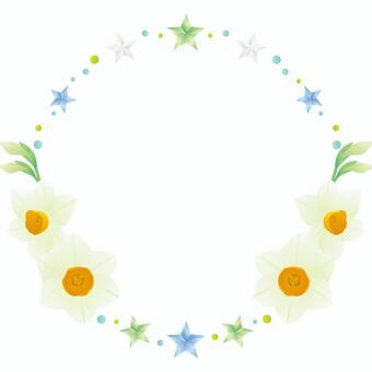 Stars and daffodil frames