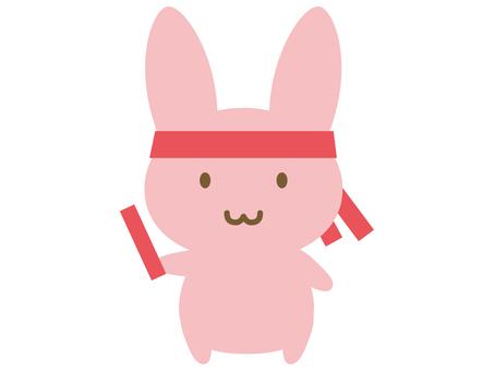 兔子继电器