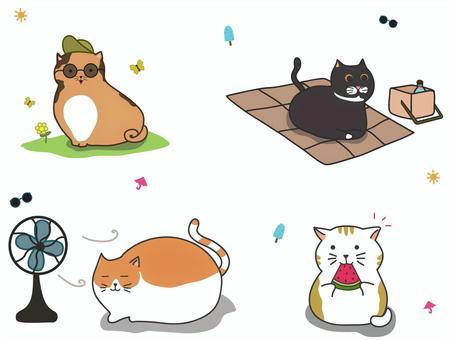胖可愛的貓咪套裝,貓夏日場景