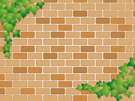 磚牆和常春藤