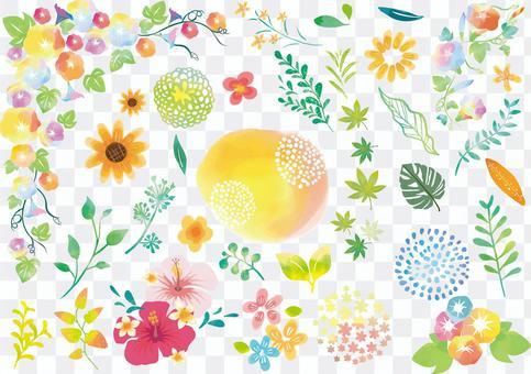 Summer plant watercolor icon set