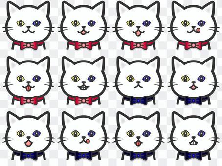 純白色貓咪套裝91貓眼套裝2黃色藍眼睛