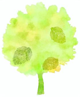 Abstract watercolor of fresh green tree