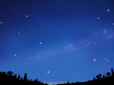 繁星點點的天空與樹木的影子