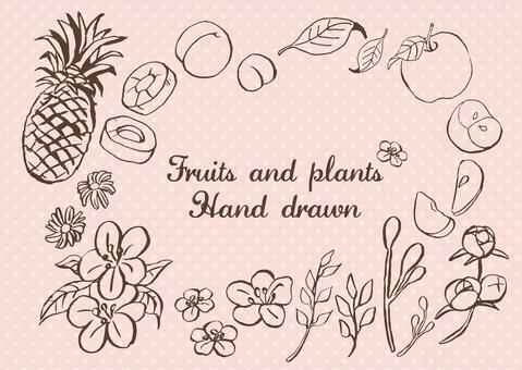 鬆散的手寫水果和葉子