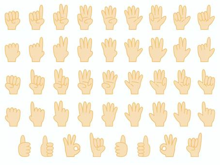 一套手標誌(各種形式的手)