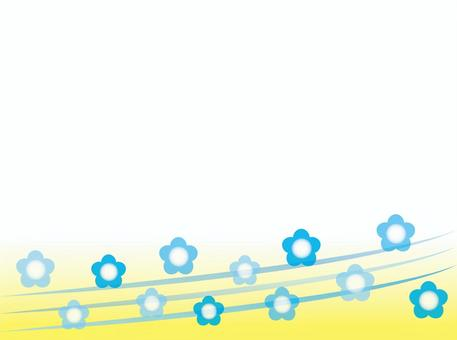 Nemophila4黃色