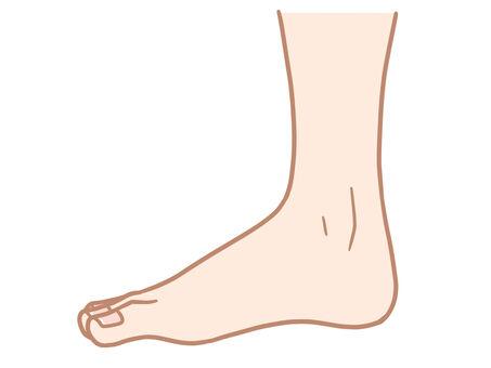 Foot (side)