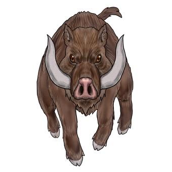 Big boar monster