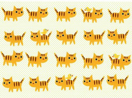 Baby Tiger pattern