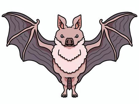 簡單的蝙蝠圖