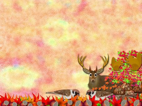 秋天的公告板(2646)