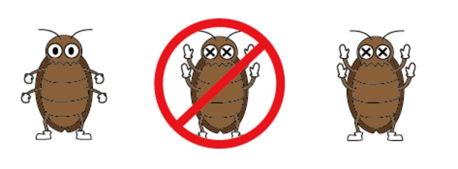 바퀴벌레 -3 종