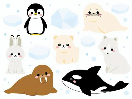 Sea creatures ~ polar version ~
