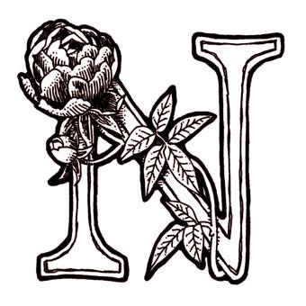 仿古筆劃裝飾初始N玫瑰