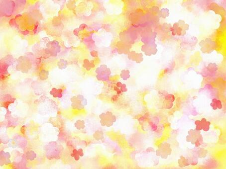 梅花圖像的香氣圖像