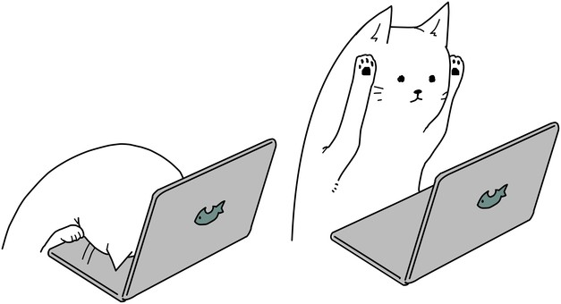 A cat who gave up on a computer. A cat that is not good at it.
