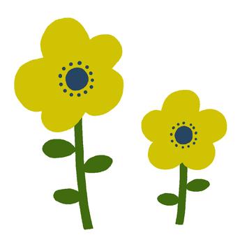 斯堪的納維亞黃色的花朵
