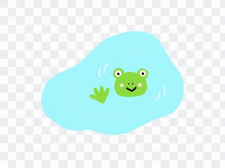 水坑和青蛙