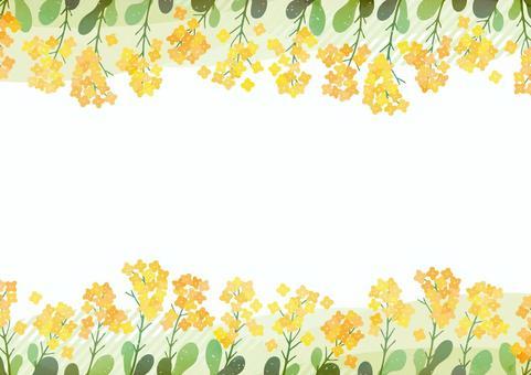 春天框架與盛開的油菜花開