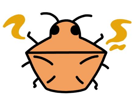 Smelling stink bug orange