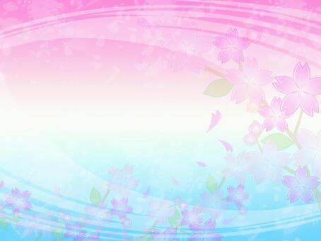 櫻花背景28
