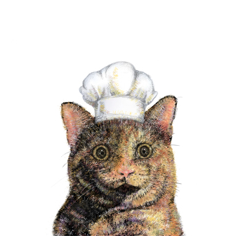 Rust cat chef face front