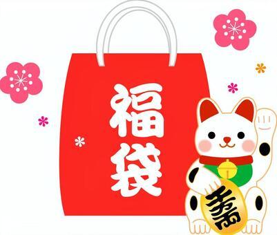 Lucky bag illustration