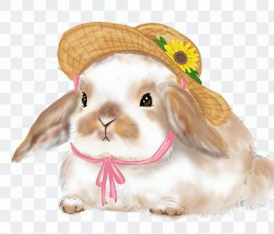 調味耳朵兔子和草帽(帶向日葵)