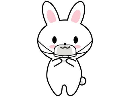 戴著老鼠盾的兔子