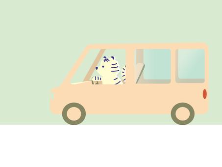 開我的車_白虎