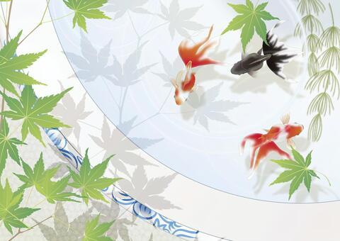 藍色秋天的葉子_水平尺寸在一個魚缸裡