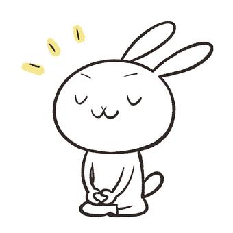 Rabbit meditating