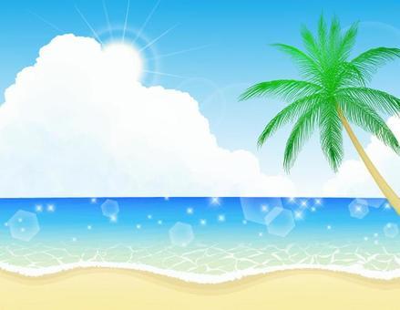 海灘和棕櫚樹2