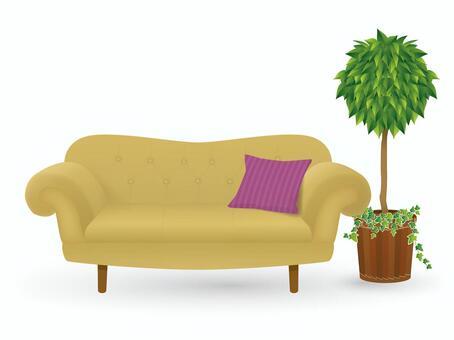 소파와 관엽 식물