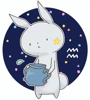 Constellation rabbits 13