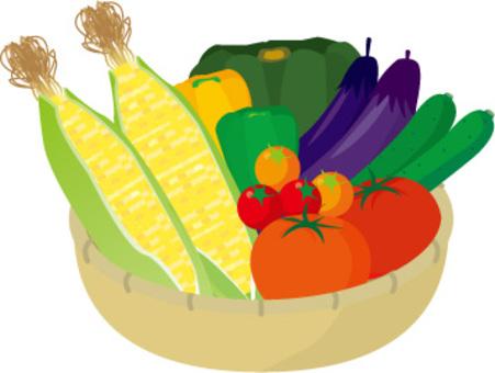夏季蔬菜玉米,青椒,黃瓜