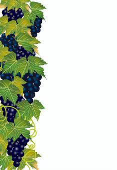 美味的葡萄21