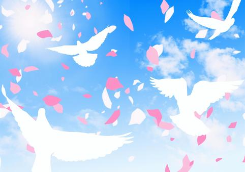 太陽光の降り注ぐ青空に舞う花びらと鳥