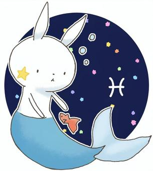 Constellation rabbits 14
