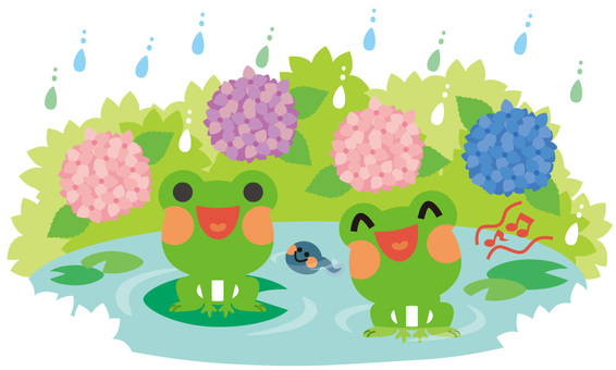 Frog of rainy season