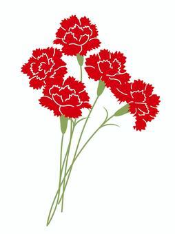 康乃馨切花(74)