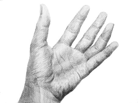 손 그림 20