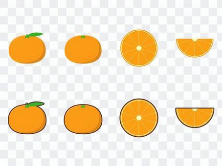 橘子單點插圖集C