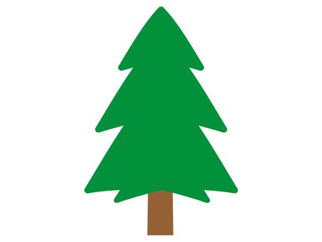 柳杉樹插圖