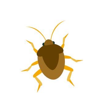 Bug Bug 3