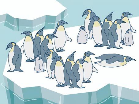 ペンギンの群れ 氷 南極