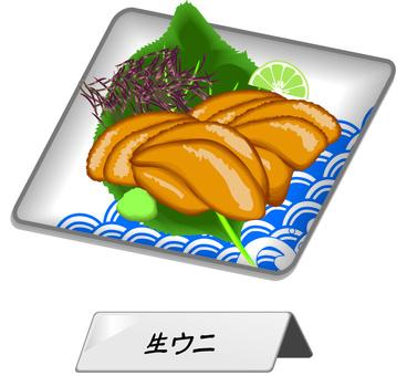 海膽生海膽生魚片單品海鮮