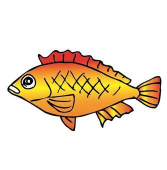 紅色豪華的魚